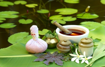 Free Ayurvedic consultations on Thursdays at the Embassy of India!